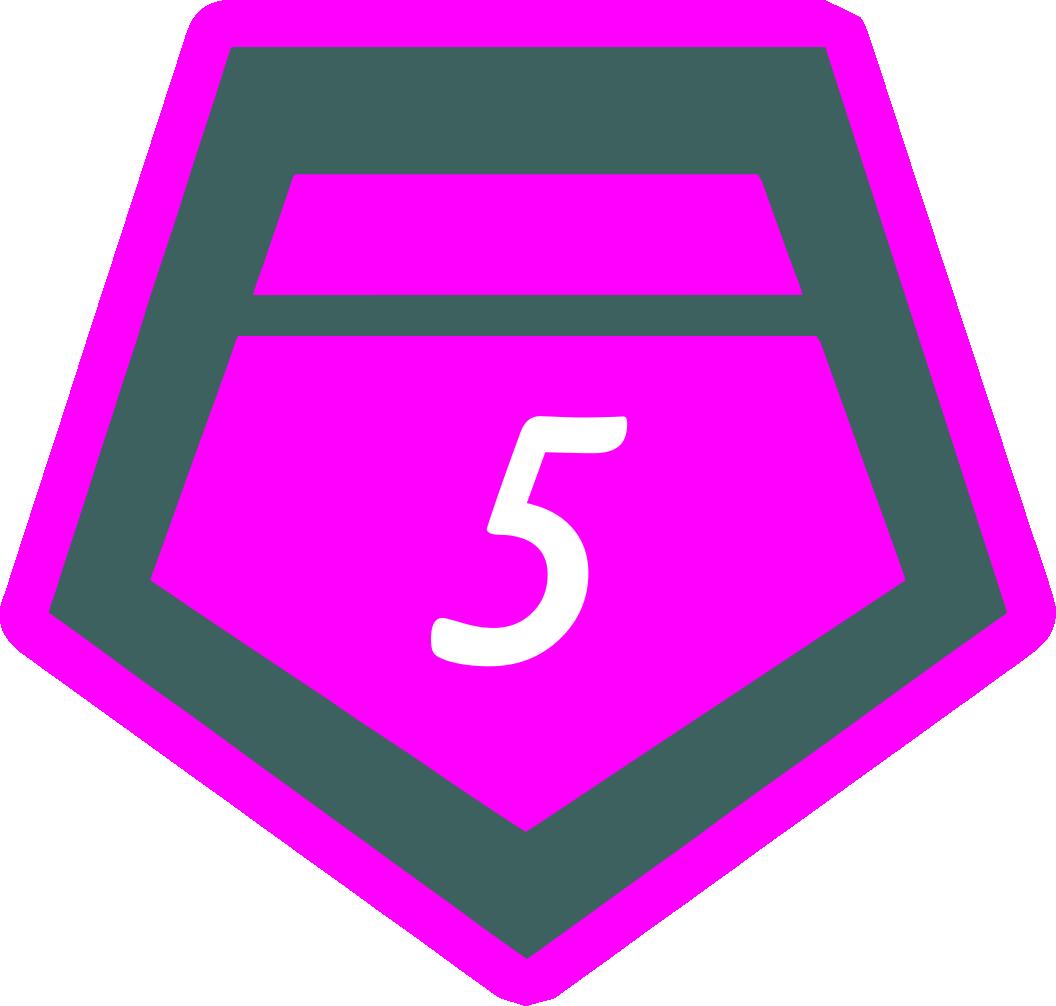 5 место