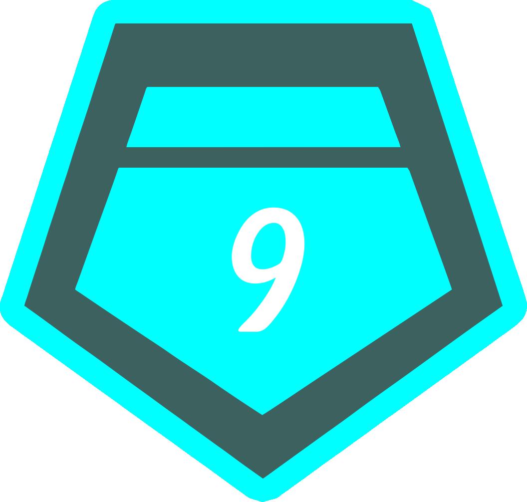 9 место