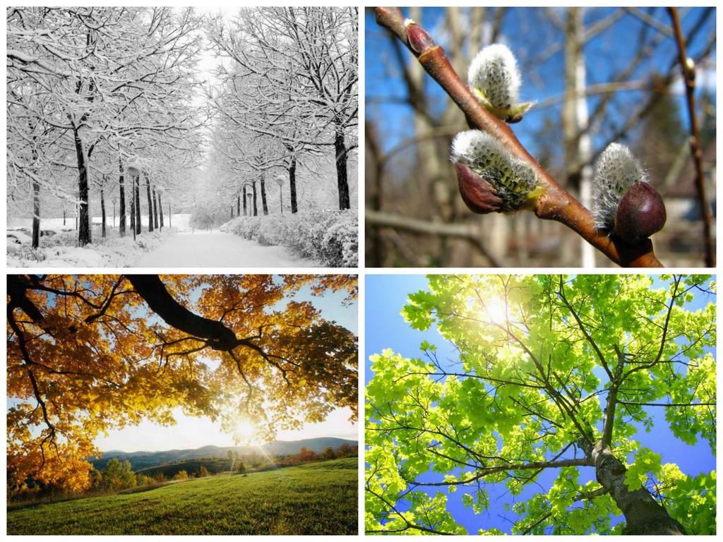 Открытка, картинки осень зима весна