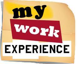 Опыт работы (Work experience)